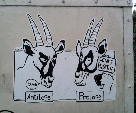 Antilope vs Prolope